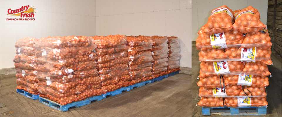 Shipping Country Fresh Brand Onions